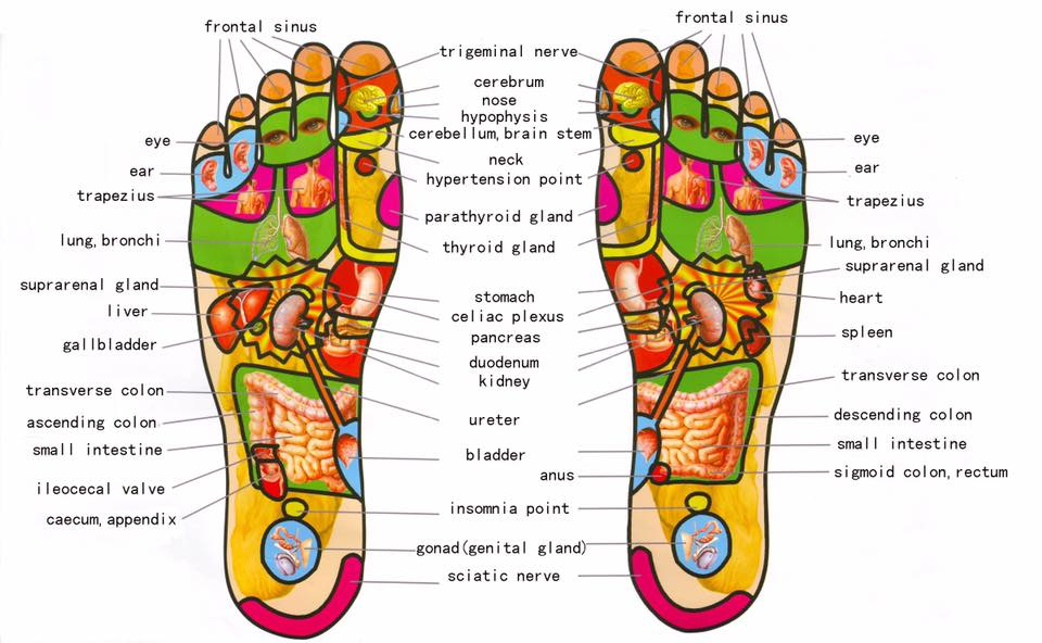 Foot Reflexology Pacific Ocean Wellness